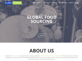 euro-foods.de one page layout